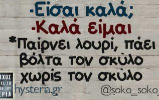 #soko_soko_ 2
