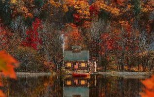 9823 Ωραία τοπία και μέρη, Άγρια Φύση, Όμορφα ζώα 18