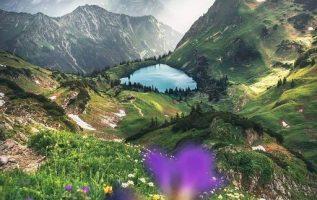 8386 Ωραία τοπία και μέρη, Άγρια Φύση, Όμορφα ζώα 5