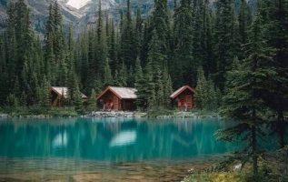 9460 Ωραία τοπία και μέρη, Άγρια Φύση, Όμορφα ζώα 4
