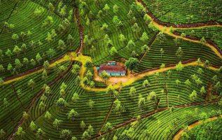 11128 Ωραία τοπία και μέρη, Άγρια Φύση, Όμορφα ζώα 4