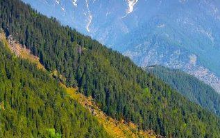 11472 Ωραία τοπία και μέρη, Άγρια Φύση, Όμορφα ζώα 13