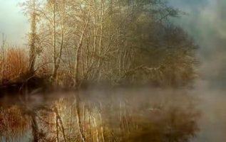 11384 Ωραία τοπία και μέρη, Άγρια Φύση, Όμορφα ζώα 4