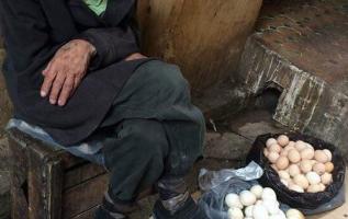 Μία κυρία τον ρώτησε: «Πόσο πωλείται το ένα αυγό;»... 2