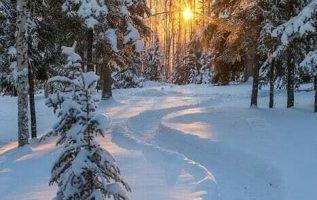 Wonderful Nature... 3