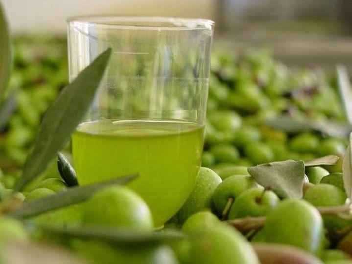 Γνωρίζετε ότι, η ελαιοευρωπείνη βρίσκεται εκτός από τα φύλλα της ελιάς και σε υψ... 1