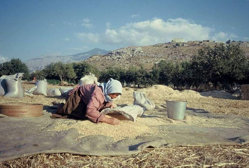 Η Παγκόσμια Ημέρας Αγρότισσας γιορτάζεται κάθε χρόνο στις 15 Οκτωβρίου.... 1