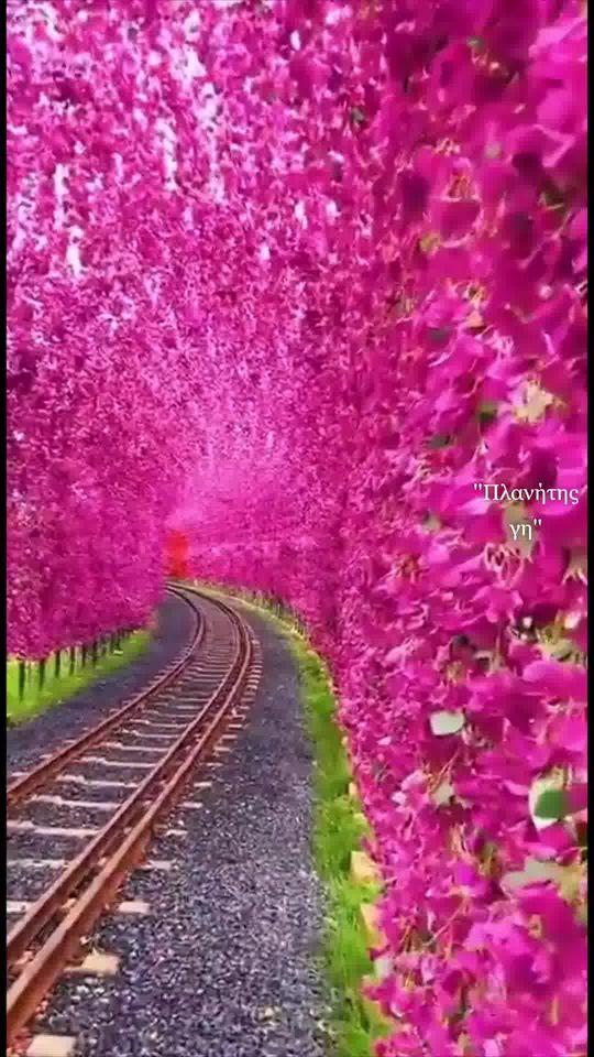 Να φροντίζεις στη ζωή να παίρνεις τους δρόμους με την ωραιότερη θέα... 1