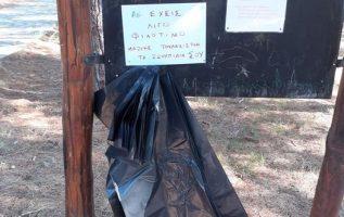 Οι εθελοντές του συλλόγου Φίλοι του Δάσους στην προσπάθειά τους να διατηρήσουν τ... 2