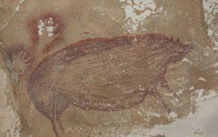 Ανακαλύφθηκε στην Ινδονησία η αρχαιότερη σπηλαιογραφία ζώου στον κόσμο, 45.500 ε... 5