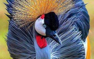 Η ομορφιά της φύσης... 2