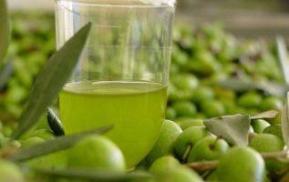 Γνωρίζετε ότι, η ελαιοευρωπείνη βρίσκεται εκτός από τα φύλλα της ελιάς και σε υψ... 3