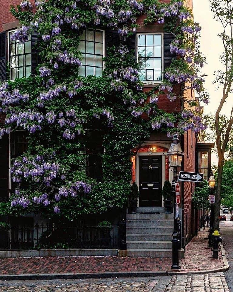 Magnificent Boston... 2