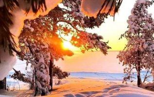 Wonderful Nature... 19