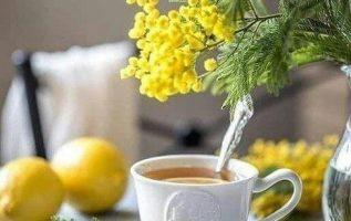 Καλημέρα σας... 4