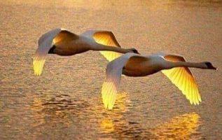 Beautiful sunset!... 7