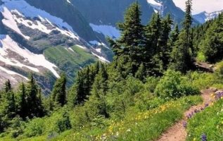Cascade Pass,USA.... 2