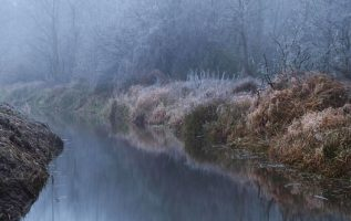 Cold foggy morning, Bzura river valley, Poland... 3