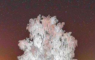 Crystal tree, Russia... 2