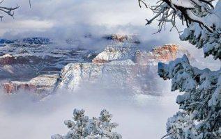 Grand Canyon, Arizona, USA... 4