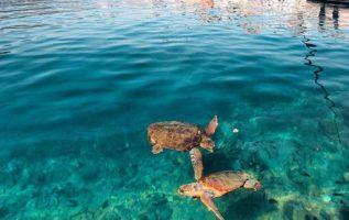 Kastelorizo island #Greece !!.... 4