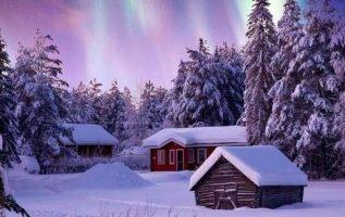Lapland, Finland. : Senna Relax... 5