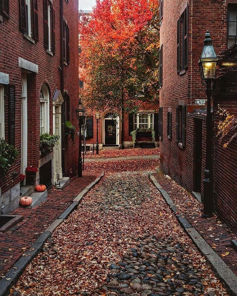 Magnificent Boston... 1