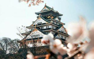 """""""Osaka castle in Full bloom """"... 2"""