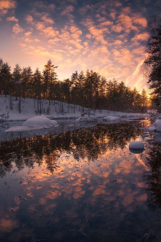 Winter Light... 1