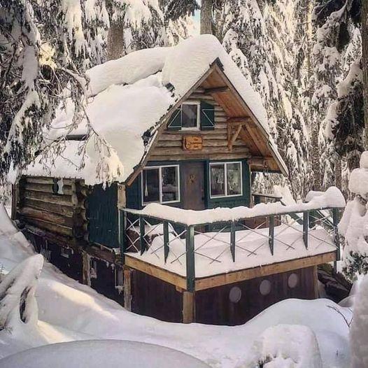 Winter Mood... 1