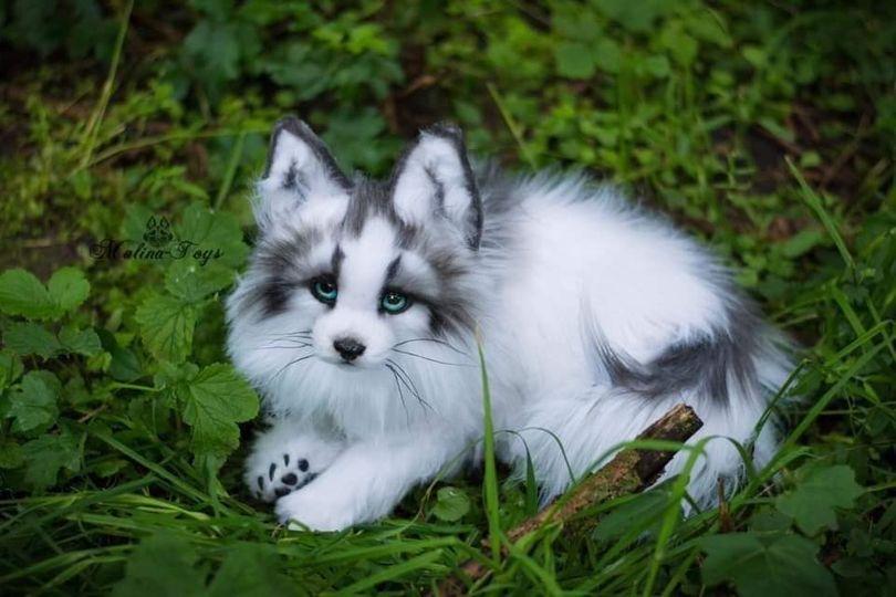 αλεπού ! πόσο όμορφη και ιδιαίτερη <3... 1