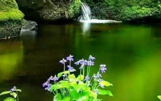 φύση και γαλήνη... 14