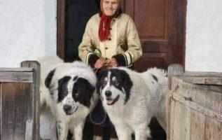 Νάσαι καλα γιαγιά με τους προστάτες που εχεις!... 4