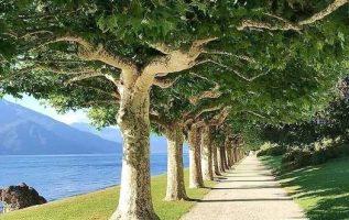 Μια ομορφιά στο δρόμο της χαλάρωσης... 6