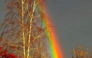 Μαγική εικόνα... 3