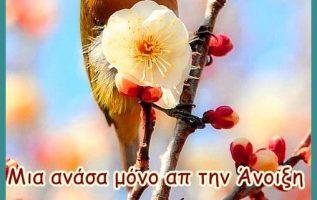 ′′ Σιωπηλοί άνθρωποι είναι αυτοί που έχουν πολλά να πουν....... 7