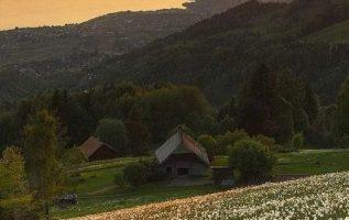 Beautiful nature.... 2