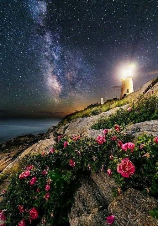 Wonderful Nature.... 1