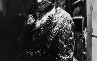 Claude Raines (November 10, 1889 - May 30, 1967). The Invisible Man (1933).... 3