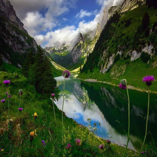 Fälensee is a lake in the Alpstein range of the canton of Appenzell Innerrhoden,... 1