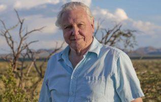 Happy Birthday to David Attenborough who turns 95 today!... 2