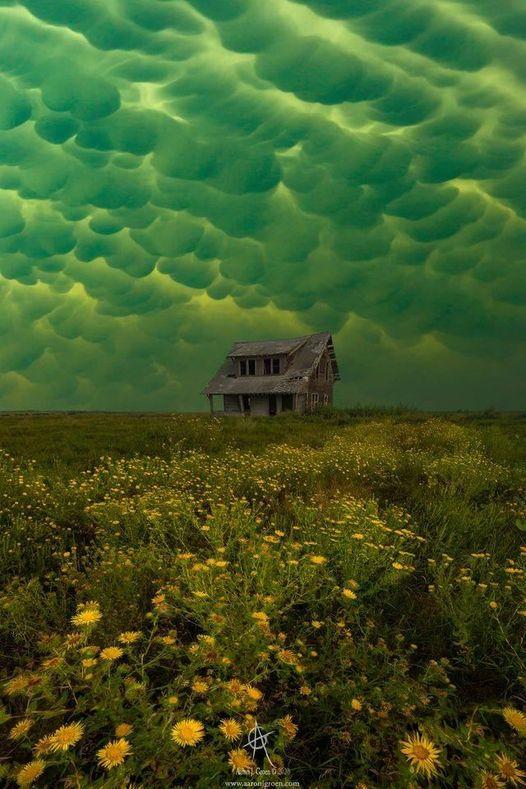 Mammatus clouds from tornado warned storm over an abandoned house. South Dakota,... 1