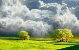 Sweet nature...... 5
