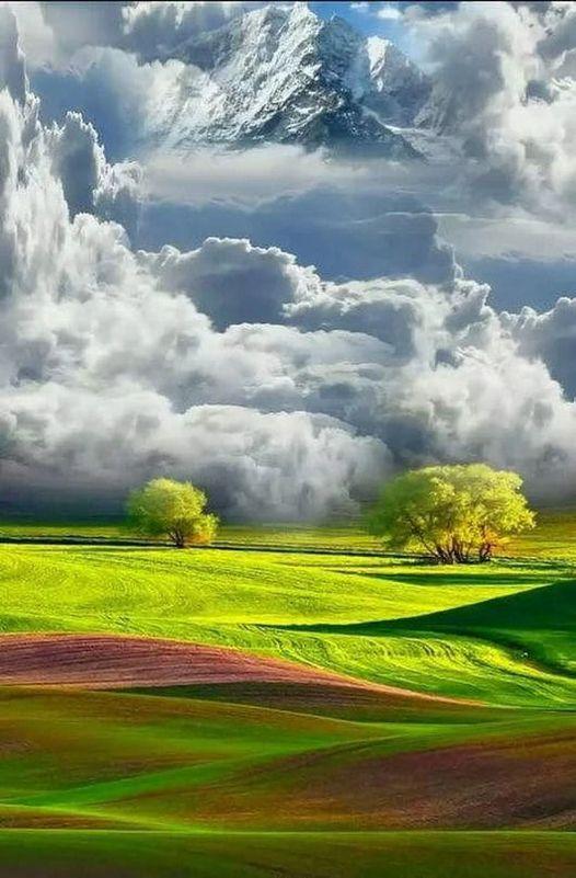 Sweet nature...... 1
