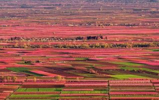 The Valley of Pink !!... 6