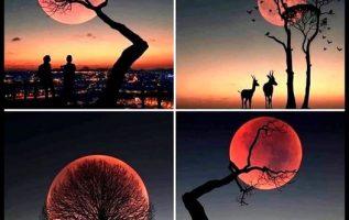 για όσους αγαπούν το φεγγάρι........ 4