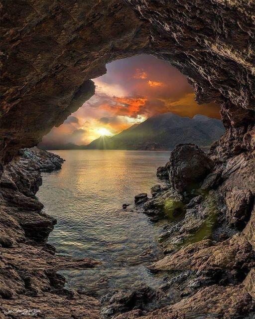 Wonderful Nature... 1