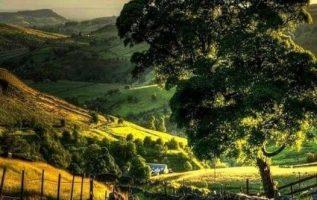 Beautiful nature... 3