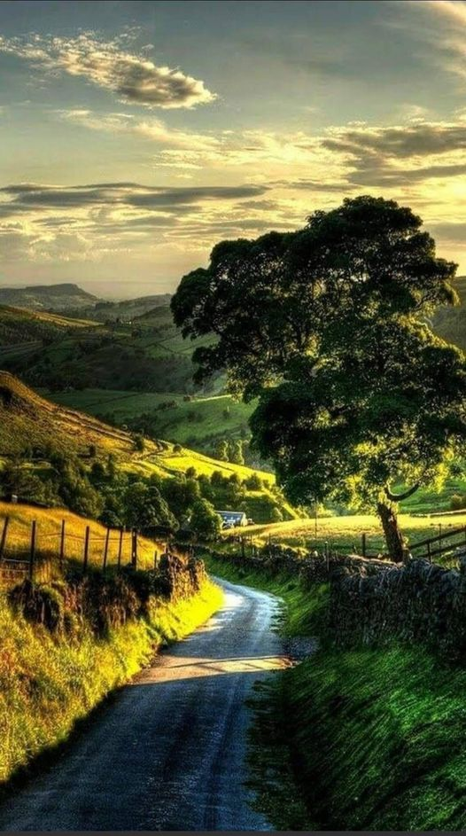 Beautiful nature... 1