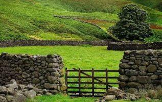Beautiful View of Nature #Ireland 3